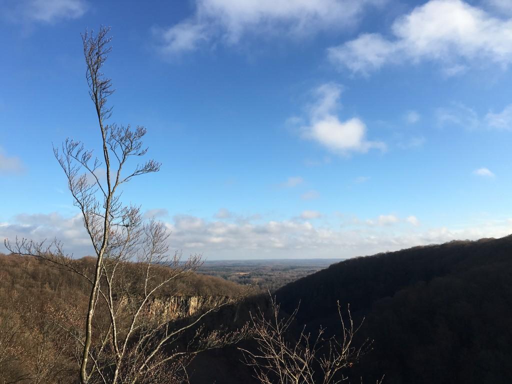 a new vista